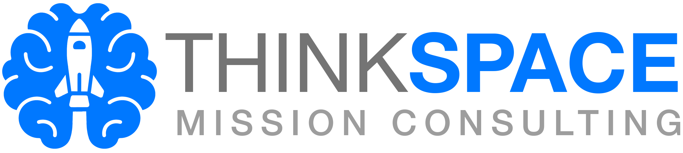 ThinkSpace Consulting Logo